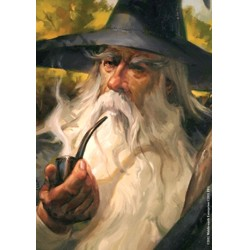 FFG obaly na karty - LOTR: Gandalf Art sleeves