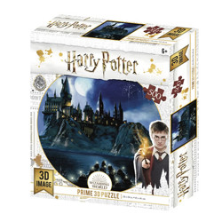 Puzzle - Harry Potter - Bradavice v noci 3D (500 dílků)
